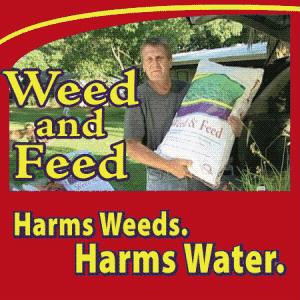 weed feed
