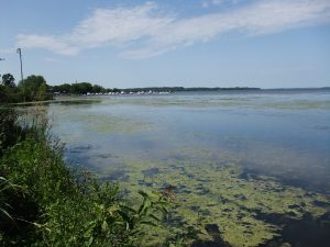 Lake Scugog Enhancement Project - plan